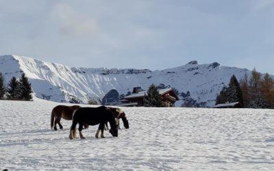 Dates d'ouverture du domaine skiable de Megève