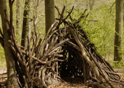 cabanes bois 1